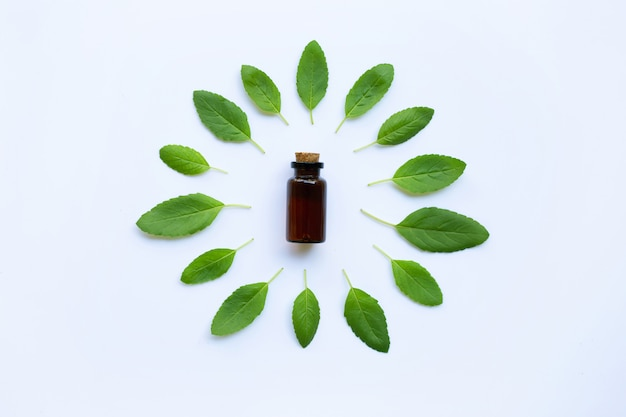 Holy basil essential oil in a glass bottle with fresh holy basil leaves