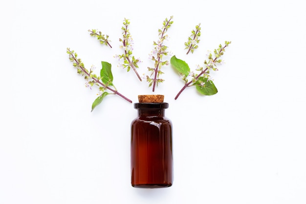 Holy basil essential oil with holy basil leaves and flower on white