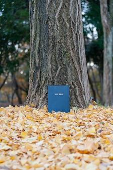 Библия на стволе дерева на открытом воздухе осенью с желтыми опавшими листьями. вертикальный снимок.