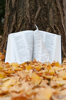 Holy bible opened in psalms on tree trunk with pages turning in the wind in japanese autumn with fallen yellow leaves. vertical shot.