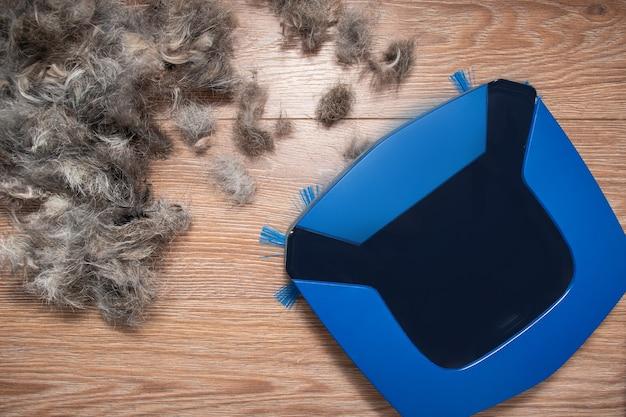 家の掃除ペットの毛皮の概念。ガベージコレクションのクローズアップ、電気ロボット掃除機のペットの毛、上面図