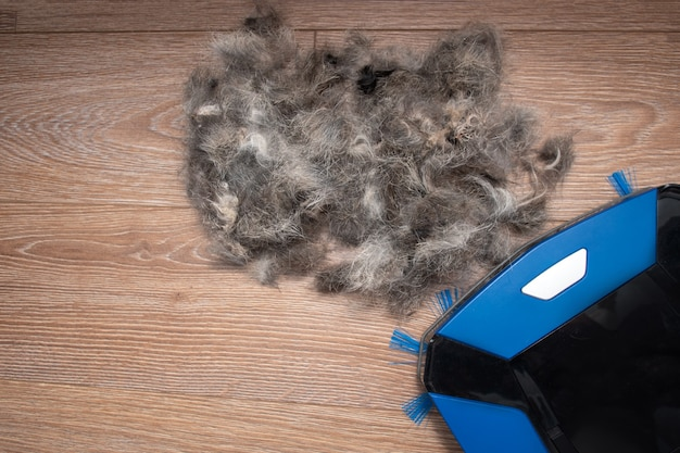 家の掃除ペットの毛皮の概念。ガベージコレクションのクローズアップ、電動ロボット掃除機のペットの毛