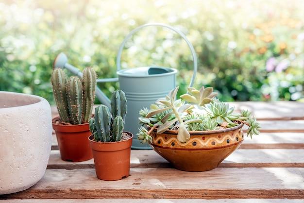 家の装飾のアイデア多肉植物サボテントレンディなセメントプランター木製の背景に