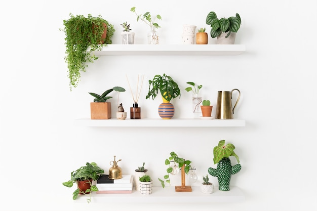 Scaffale per piante da interno per la decorazione della casa
