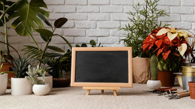 Home garden arrangement with chalkboard