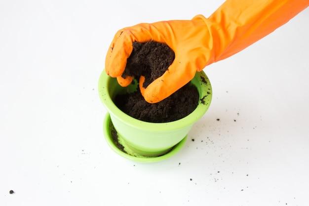 식물을 심기위한 땅의 화분 인 가정 원예.