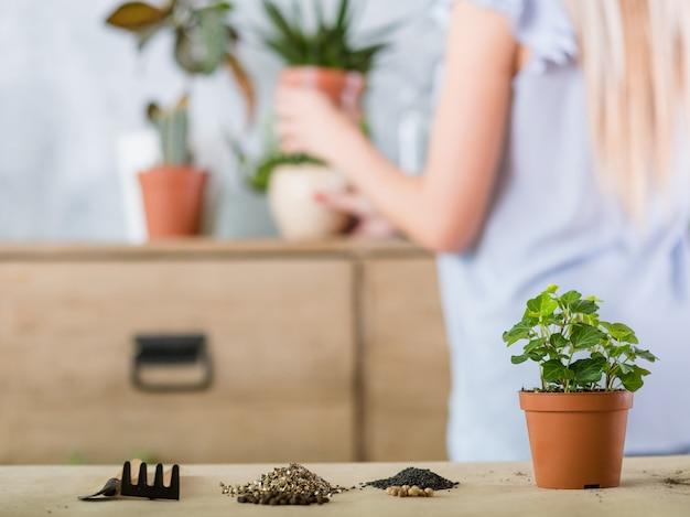 家の園芸の概念。植物の移植。植木鉢と園芸工具。