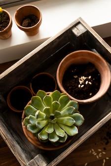 花が付いている家の園芸鍋