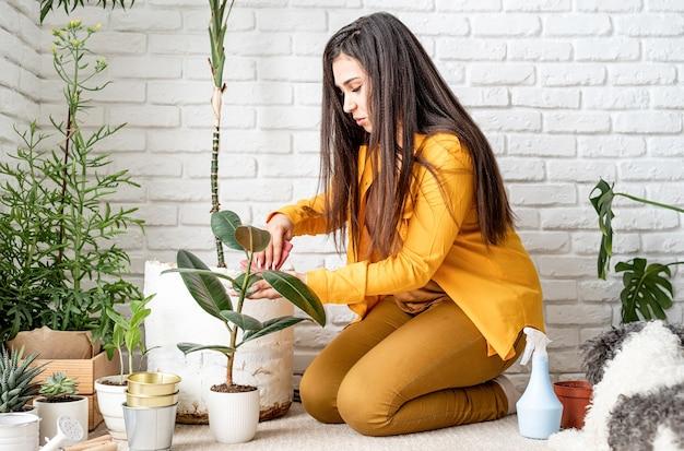 가정 원예. 그녀의 집 정원 식물을 돌보는 여자 정원사