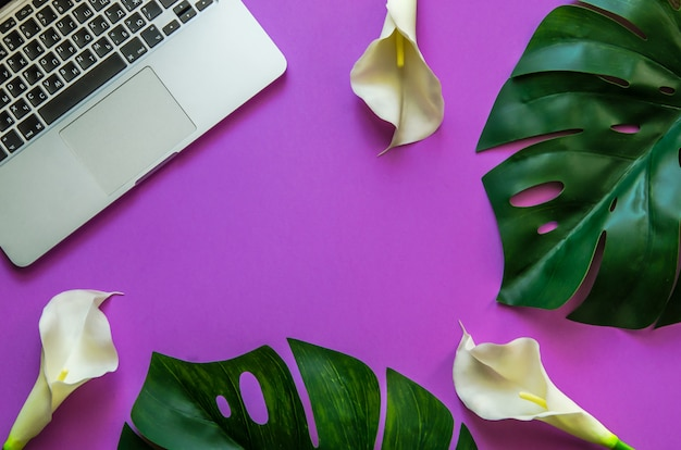 Home office workspace frame with laptop, tropical leaves monstera and white callas