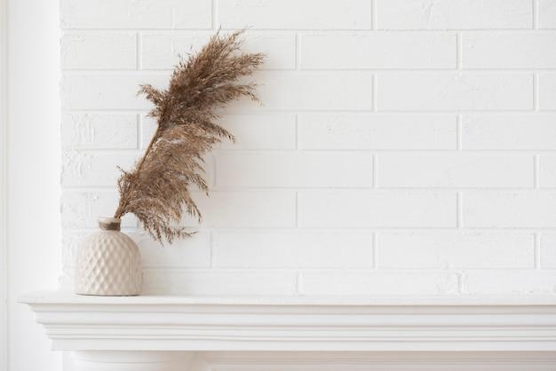 Композиция для украшения домашнего растения с копией пространства