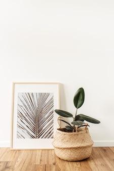 Домашнее растение фикус в горшке из ротанга перед фоторамкой с фото актуального пальмового листа