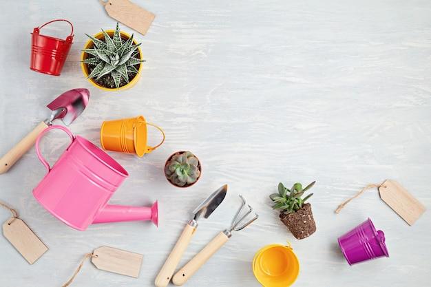 Комнатные растения и садовый инвентарь. комнатные растения в горшках на фоне светового стола. стильный внутренний сад. домашнее садоводство, досуг или хобби во время карантина