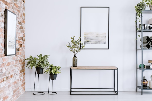Home plants on racks and metal table standing in white room interior