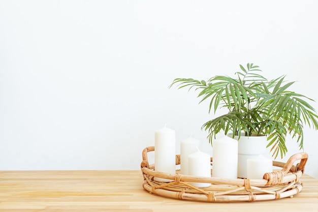 家の静物の背景。テンプレート、モックアップ。緑の植物とシンプルでモダンな居心地の良いインテリア。家の装飾をデザインします。 Premium写真