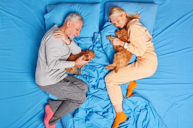 Home time sleeping and resting concept. senior couple rest together with small pedigree puppies in bed dressed in nightwear enjoy peaceful atmosphere have healthy good night sleep. high angle view