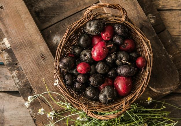 Homegrown organic raw purple vitelotte potato on wood table