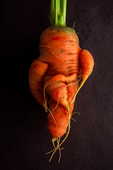 Homegrown ugly carrot