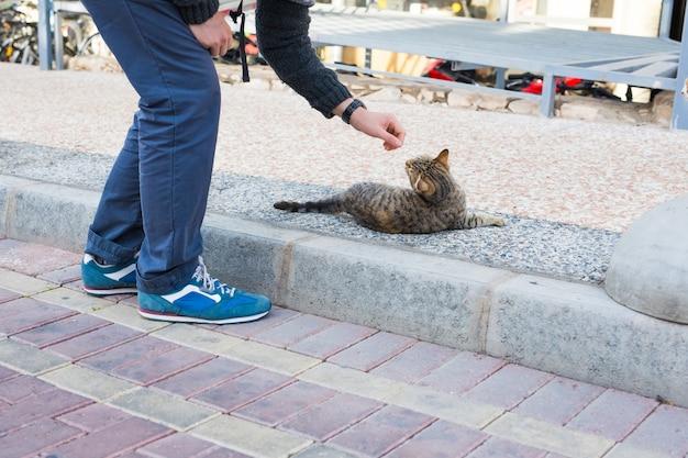 노숙자 고양이, 애완 동물 및 동물 개념-남자는 거리 고양이를 애무합니다.