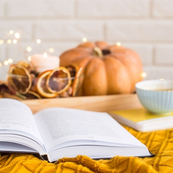 Homely cozy rest on an autumn day off - reading among blankets