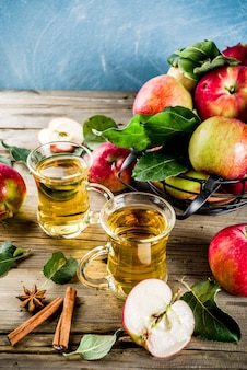 Homemade apple cider with cinnamon and anise spices, with fresh apples