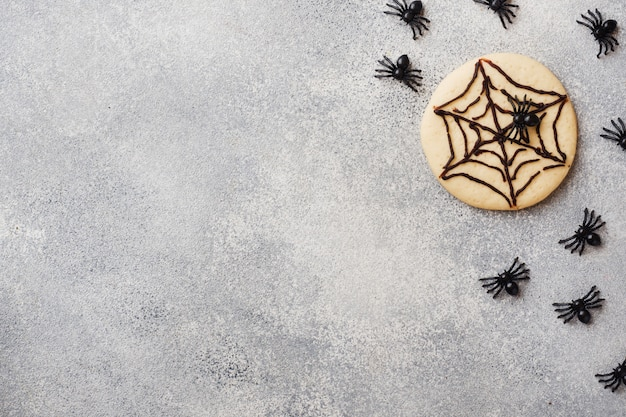 Homemade cookies for halloween, cookies with chocolate web and spiders