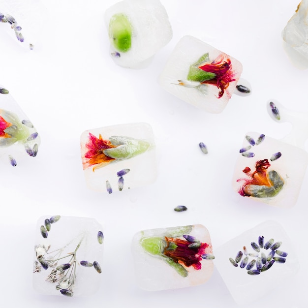 Homemade decorative ice cubes with flowers