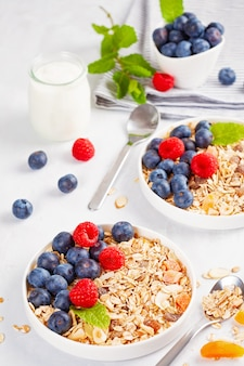 Homemade granola or oatmeal muesli with nuts, dried fruits and fresh berries.