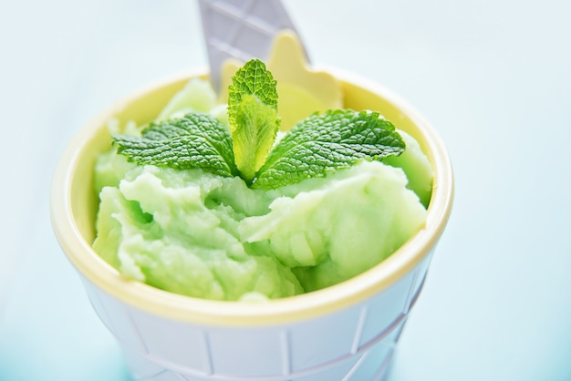 Homemade green organic avocado ice cream with mint leaves