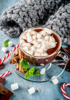 Homemade hot chocolate with mint, candy cane and marshmallow, light blue background with warm blanket,