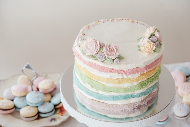 Homemade pastel colorful layered birthday cake and macaroons