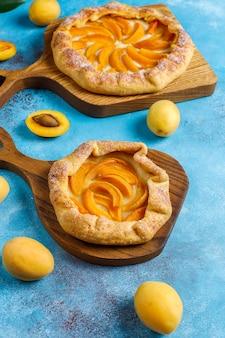 Домашние деревенские абрикосовые галетки со свежими органическими фруктами.