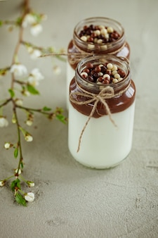 Homemade yoghurt with chocolate mousse and  chocolate candy drops with spring branch.