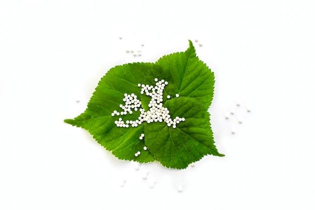 白い背景の上の緑の植物の葉のホメオパシー小球(錠剤)