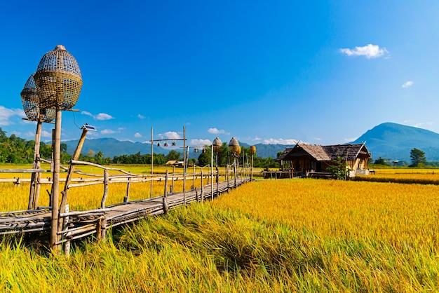 Проживание в семье в лесу дом из бамбука в чианг дао чиангмай, таиланд
