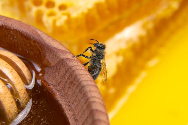 꿀 꿀벌은 신선한 벌집 클로즈업으로 나무 접시에 앉아 있습니다. 곤충과 유기농 비타민 식품