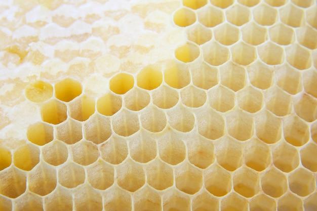 꿀 빗을 닫습니다. 달콤한 디저트. 고칼로리 식품