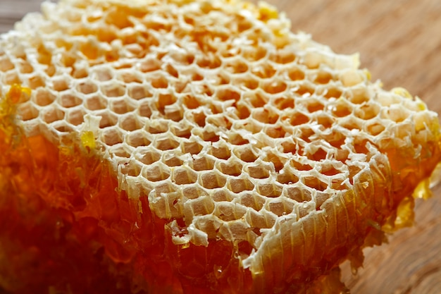 Honey honeycomb detail macro