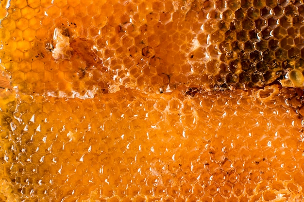 Honeycomb detail