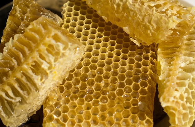 Honeycomb pieces. honey flows from fresh cut honeycombs.