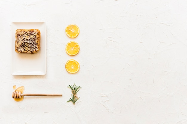 Honeycomb with dipper, rosemary, and row of lemon slice on white backdrop