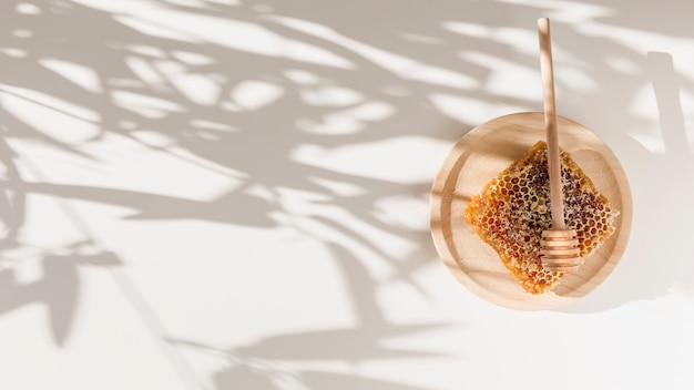 Honeycomb with honey dipper on wooden plate over the shadow of leaves on wall