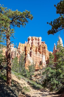 Hoodoos on mossy creek trail in bryce canyon
