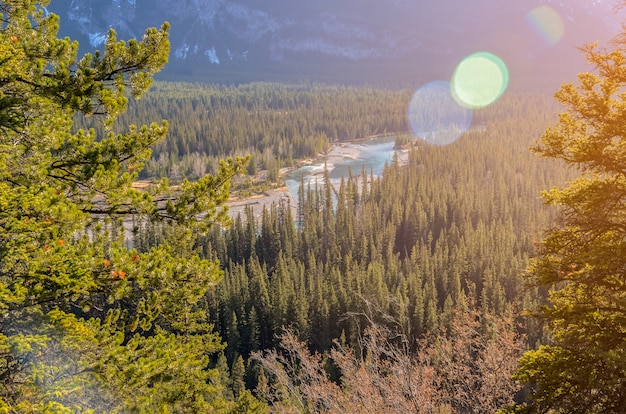 カナダ、アルバータ州のバンフ国立公園でトンネル山の近くのhoodoos