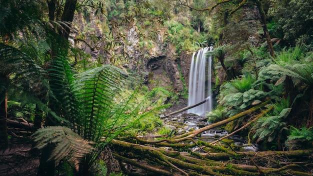 Hopetounはグレートオトウェイ国立公園、ビクトリア、オーストラリアに落ちます。