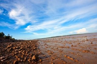 Hopewell beach  line