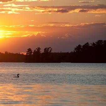 Горизонт в сумерках в озере вудс, онтарио