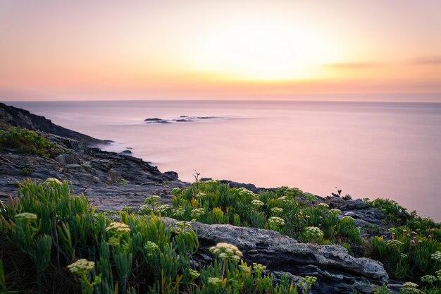 海岸のオレンジとピンクの夕日と地平線