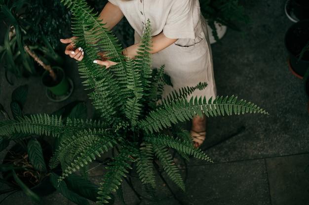 明るい色のリネンの服を着た若い女性の水平方向のトリミング写真。植物の世話。上面図