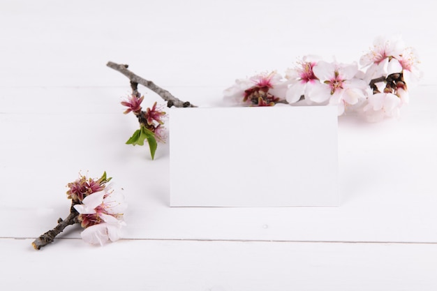 Horizontal empty card  with blooming almond tree branch, design element for wedding rsvp, thank you card, greeting or invitation card.